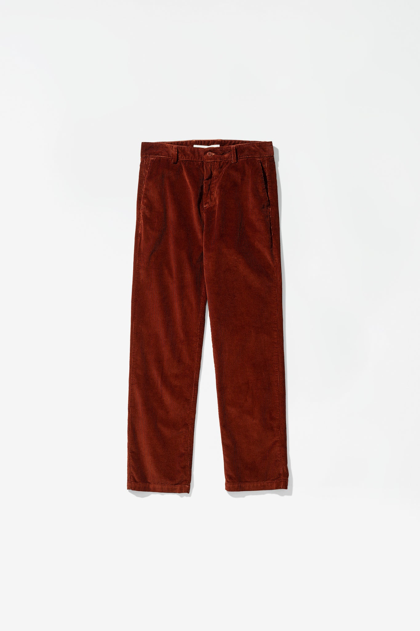 Albin 8 whale cord madder brown