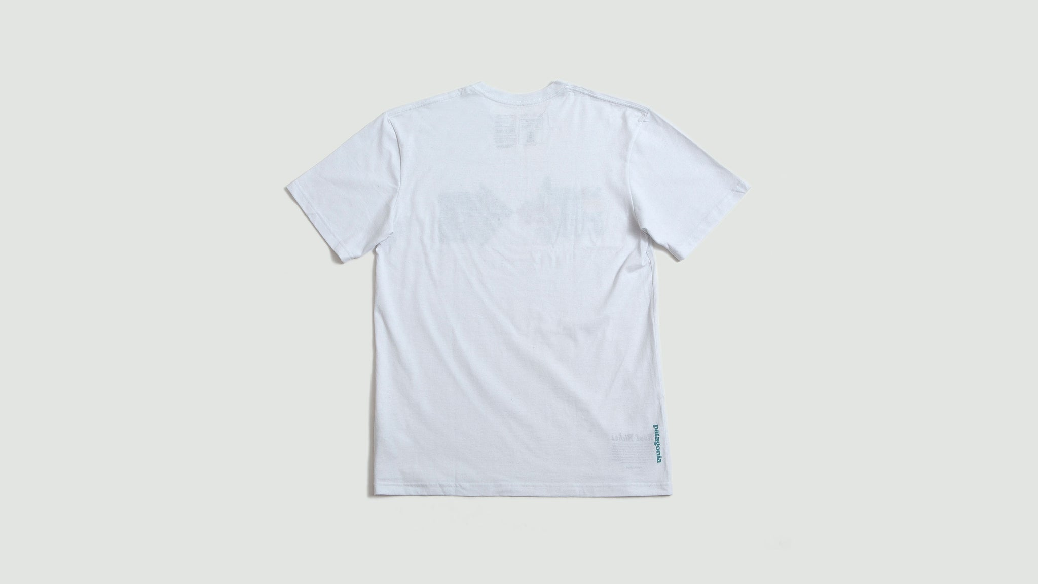 Patagonia. Mens Real Riches t-shirt white