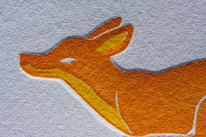 karen watkins fox flight art colorado salida letterpress greeting cards