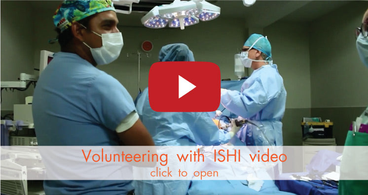 Volunteering with ISHI