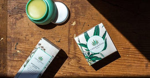 Cannabis (uhhh Weed) | A New Beauty Treatment
