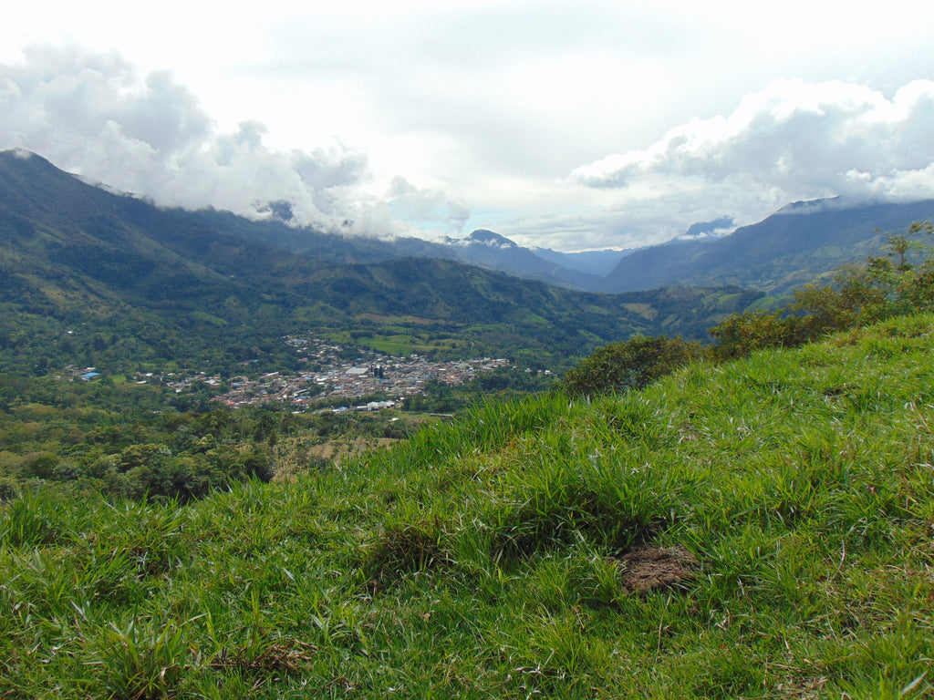 New Travels Ahead: Emerald Hunting in Colombia