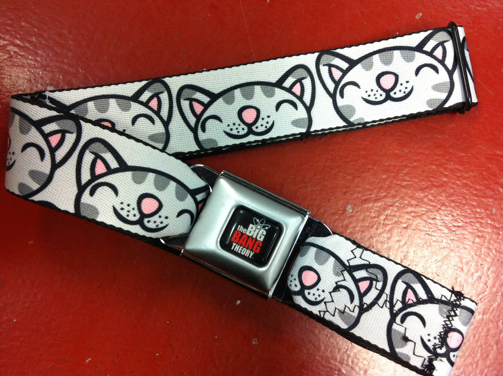 Big Bang Theory Soft Kitty Seat Belt Belt