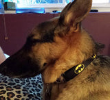 Batman Dog Leash