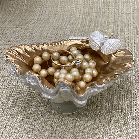 Giant Clam Shell Jewelry Holder