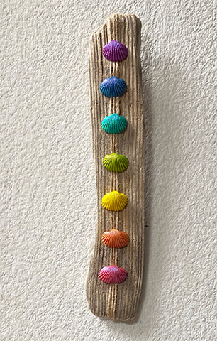 Driftwood and Shell Chakra Wall Hanging - Piece One