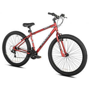 Takara T3 Fat Tire Bike 29""