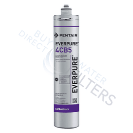 4CB5 EV9617-16 Fountain Replacement Filter - Everpure