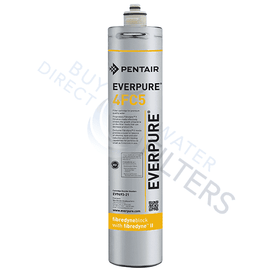 4FC5 EV9693-21 Fountain Replacement Filter - Everpure