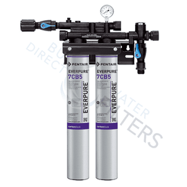Everpure® Kleensteam® II Twin System EV979740 - Buy Direct Water Filters