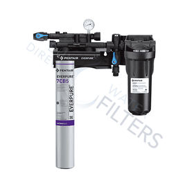 Everpure® Kleensteam® II Single Filtration System EV979721 - Buy Direct Water Filters