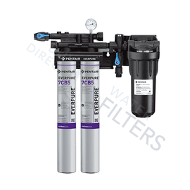 Everpure® Kleensteam® II Twin Filtration System EV979722 - Buy Direct Water Filters