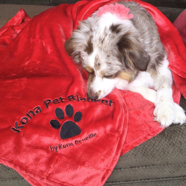 Kona Pet Blanket by Kona Benellie - RED