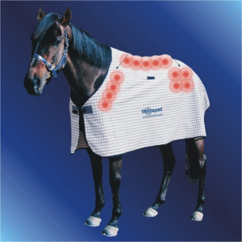 Magnetic Horse Rug