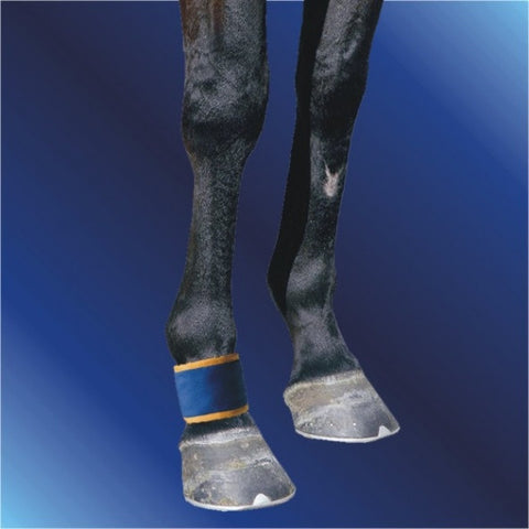 Magnetic Pastern/fetlock boot