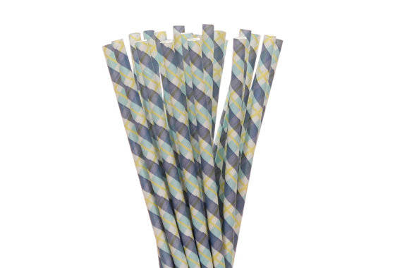 Blue Plaided Paper Straws