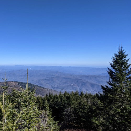 mount mitchell trail north carolina