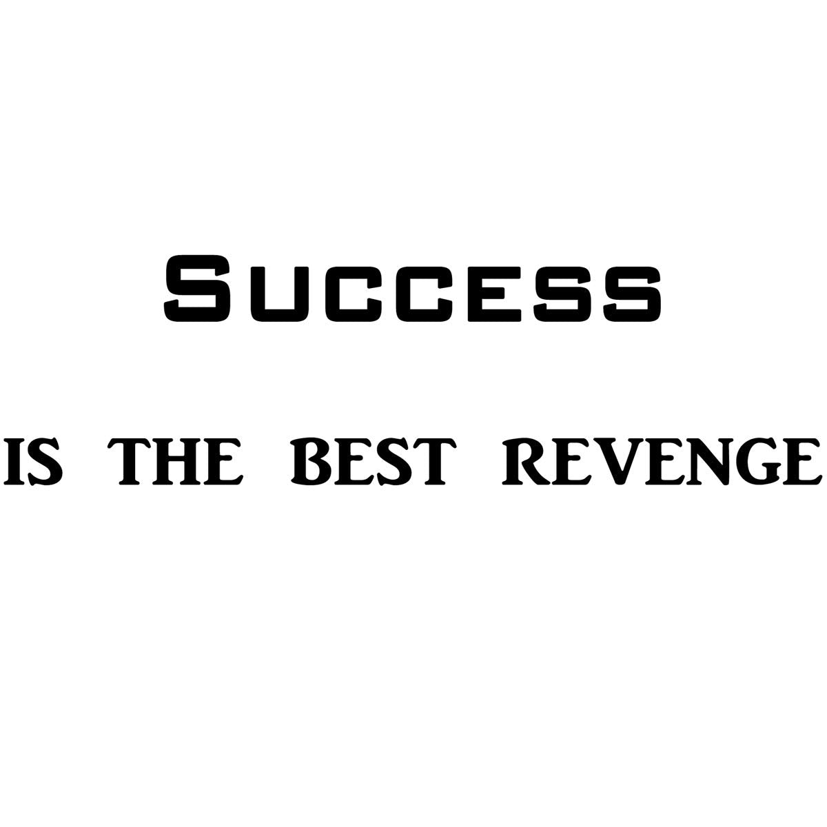 VWAQ Success is The Best Revenge Vinyl Wall Decals Encouraging Wall Quotes no background