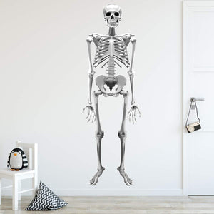 VWAQ Skeleton Wall Decal Removable - Peel and Stick Reusable Halloween Sticker Spooky Decor - HOL7 - VWAQ Vinyl Wall Art Quotes and Prints