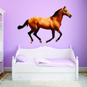 VWAQ Peel and Stick Horse Vinyl Wall Decals - Pony Wall Sticker, Stallion Wall Art