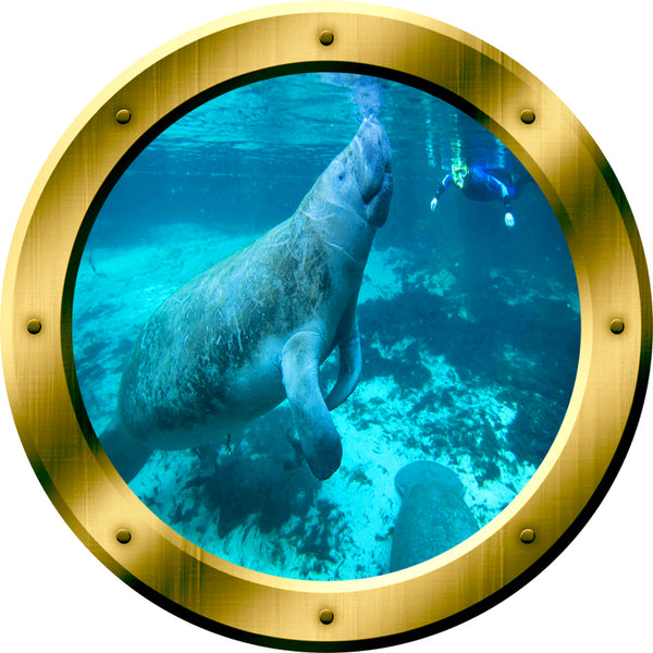 VWAQ Peel and Stick Gold Porthole Manatee Under Water Vinyl Wall Decal - GP25 no background