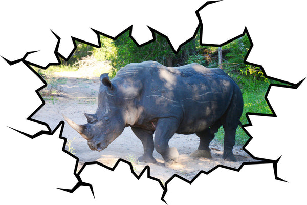 VWAQ Rhino Wall Decal Rhino Wall Art Hole In The Wall Safari Animal Decor - VWAQ Vinyl Wall Art Quotes and Prints no background