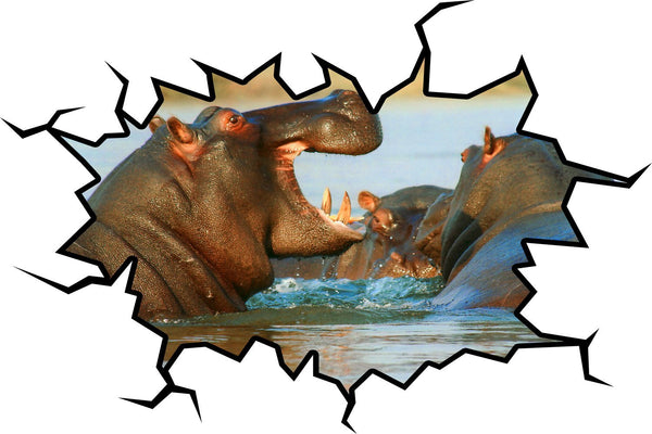 VWAQ Hippopotamus Wall Decal Art Hippo Wall Crack Hole In The Wall Mural - WC12 - VWAQ Vinyl Wall Art Quotes and Prints