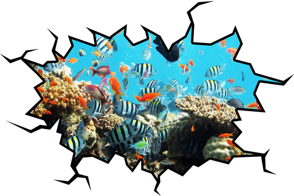 VWAQ School Of Fish Crack in the Wall Peel & Stick Removable Decal Coral Reef - VWAQ Vinyl Wall Art Quotes and Prints no background
