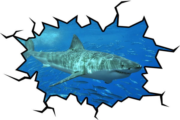 VWAQ Peel and Stick Shark Wall Crack Vinyl Wall Decal - VWAQ Vinyl Wall Art Quotes and Prints no background