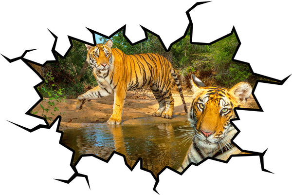 VWAQ Safari Hole in the Wall View of Tigers Removable Jungle Wall Decal - VWAQ Vinyl Wall Art Quotes and Prints no background