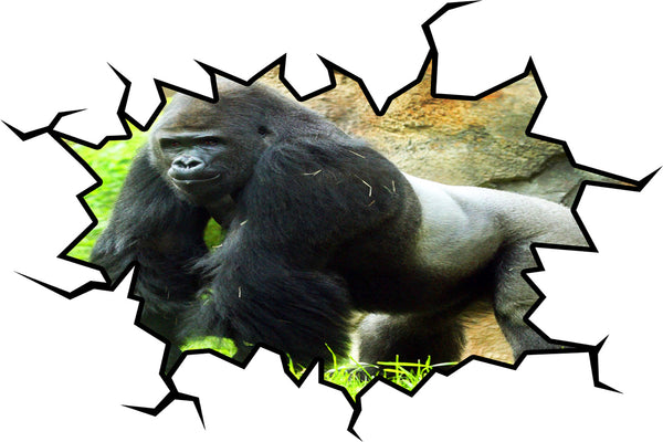 VWAQ Gorilla Wall Decal Silverback Gorilla Peel and Stick Removable Wall Decal - WC28 - VWAQ Vinyl Wall Art Quotes and Prints