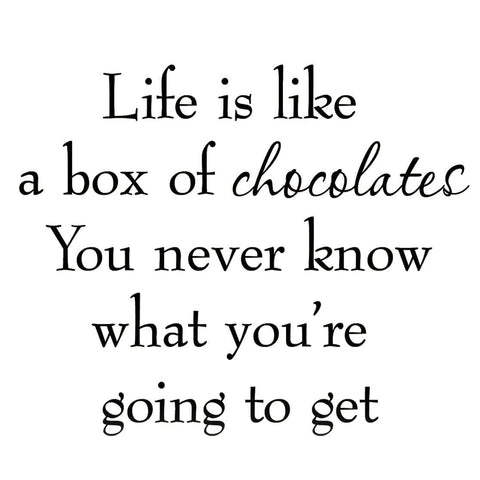 VWAQ Life is Like a Box of Chocolates Wall Decal - VWAQ Vinyl Wall Art Quotes and Prints