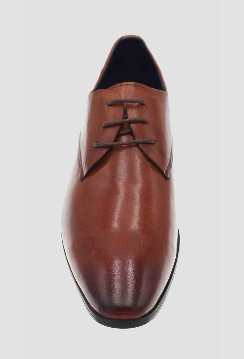 a top view of the martino carolus leather lace up shoe in dark tan FM194M