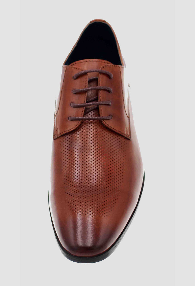 a top view of the Martino Carolus buffalo lace up leather shoe in dark tan showing the perforated detail FM192M