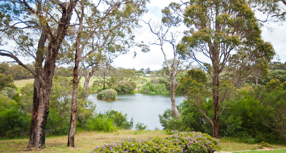 DEEP WOODS ESTATE - Margaret River, WA