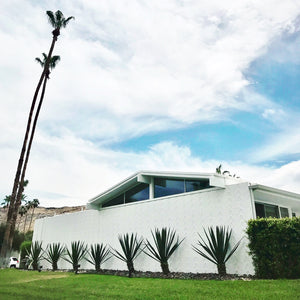 Palm Springs Desert Modernism and Midcentury Modern Architecture