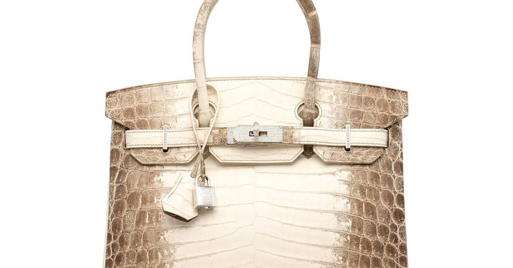 WORLD'S MOST EXPENSIVE BAGS