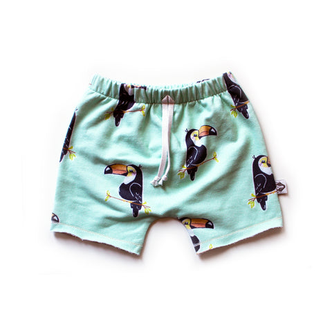 Boy Shorts; Toucans