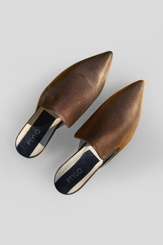 Bronze Slippers