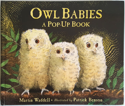 Owl Babies : A Pop-Up Book