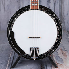 Gold Tone BG-150F Banjo, Vintage Brown
