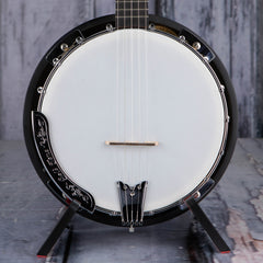 Gold Tone CC-100R Banjo, Natural Gloss