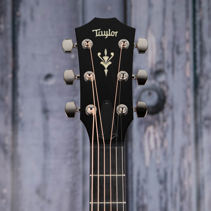 Taylor 514ce Acoustic/Electric, Natural