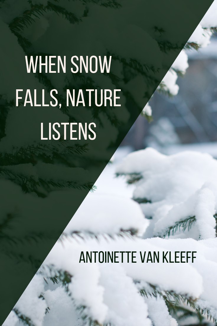 When Snow Falls, Nature Listens - tandemfortwo.com
