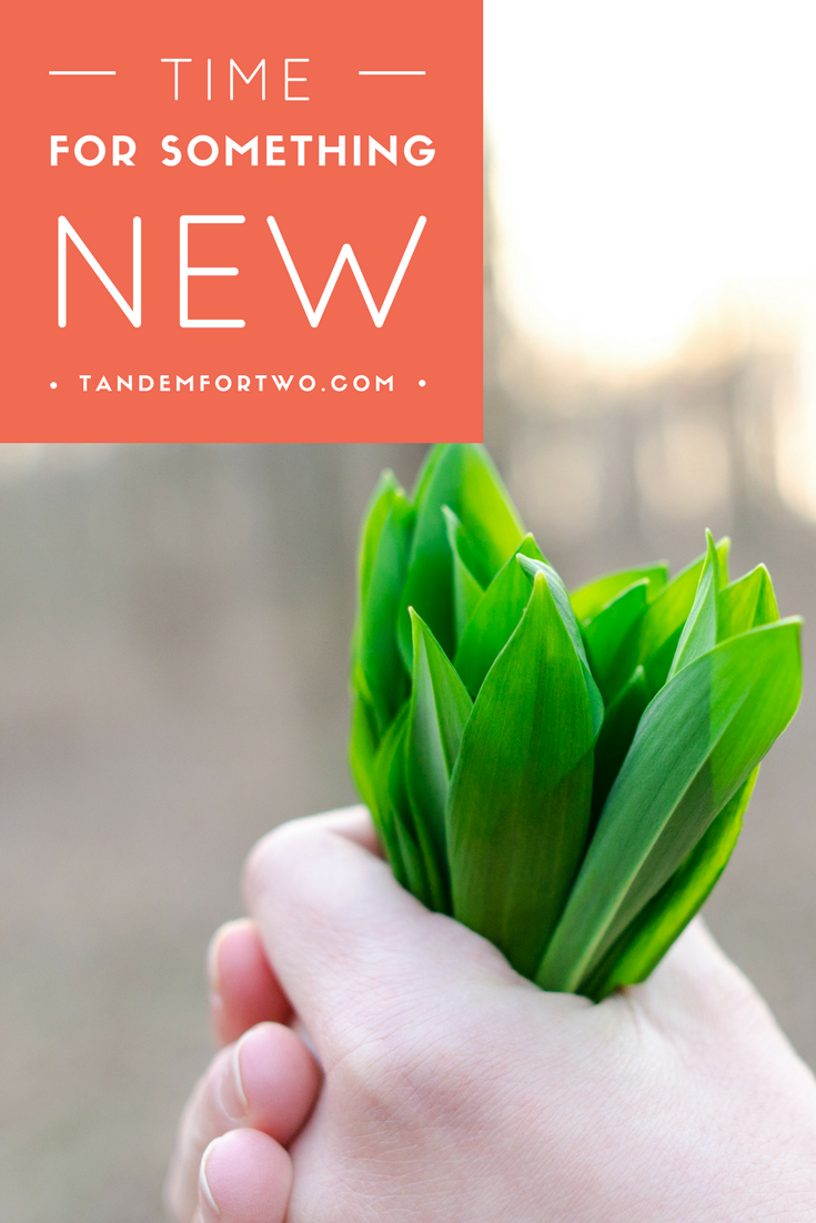 April = Time for Something New - tandemfortwo.com