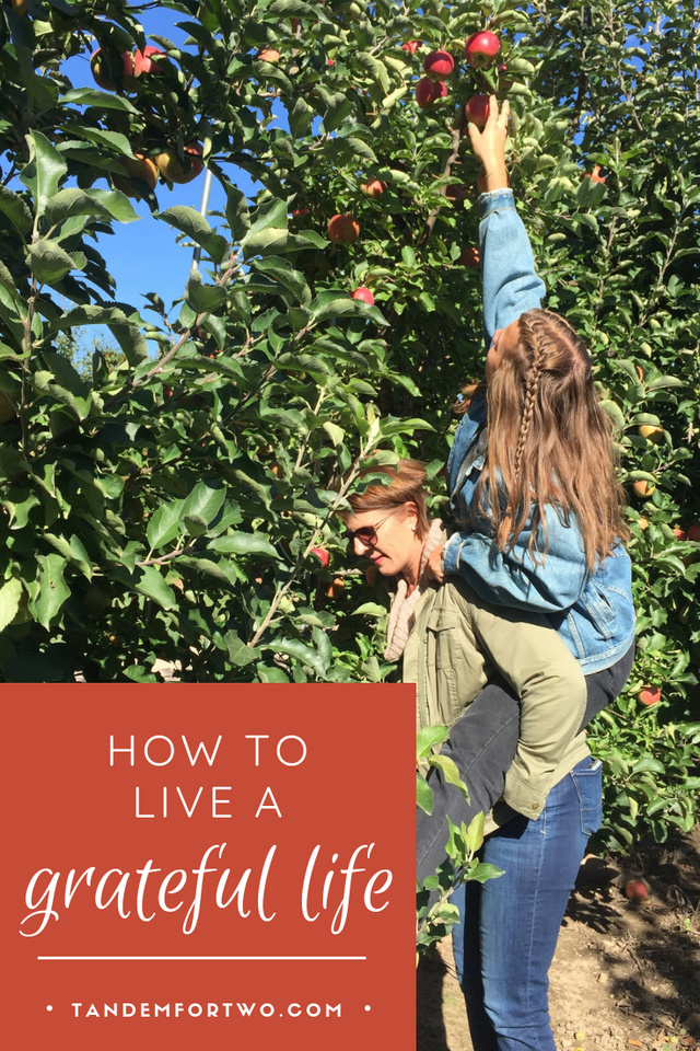 How to Live a Grateful Life - tandemfortwo.com
