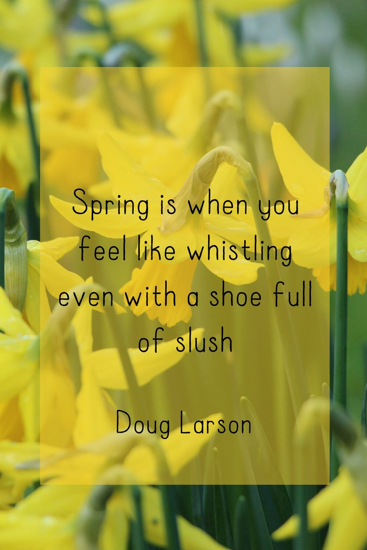 Spring is When you Feel Like Whistling...
