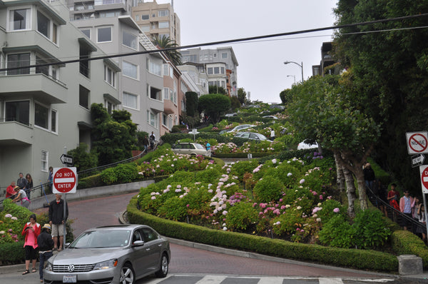 Lombard Street in San Francisco, Tandem For Two