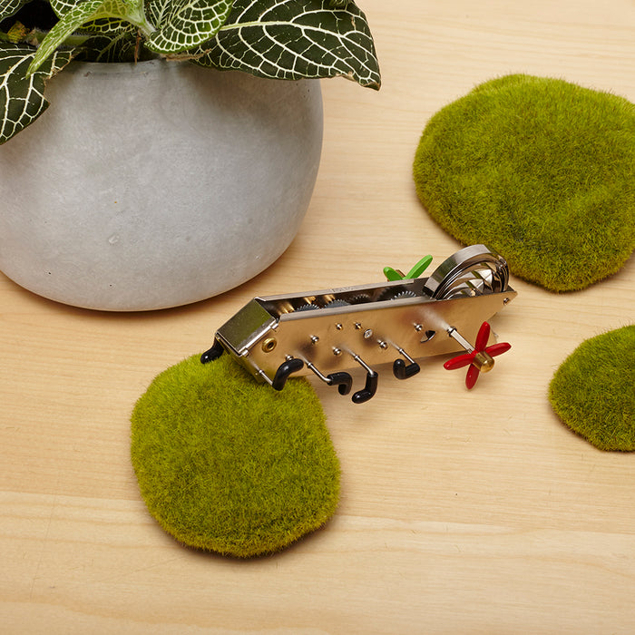 Bonga Climbing Worm Wind Up