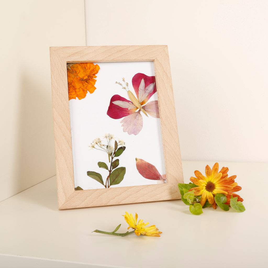 Huckleberry Make Your Own Pressed Flower Frame Art Kikkerland